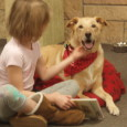 Celebrate the Holiday season by reading to and spending time with our good friend Sandy the dog, on SATURDAY, December 20th  from 2-4:30 P.M.  This time includes a flexible 15-minute […]