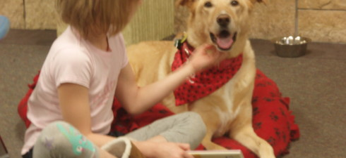 Join Sandy and her  handler at the library for the next session of Read to the Dogs on SUNDAY, May 4th  from 2-4:30 P.M.  This time includes a flexible 15-minute...