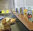You may now bring your Kindergarten children for our Read to the Dogs program. We love our good friend Sandy the Dog, and she loves children who read to her, […]